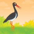 Black Stork — Stock Photo