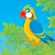 Parrot in jungle — Stock Photo #33063587