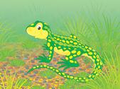 蜥蜴 — 图库照片