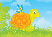 Turtle and butterfly — Stock Photo