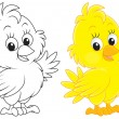 Stock Vector: Chick