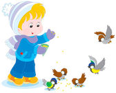 Child feeds birds — Stock Vector