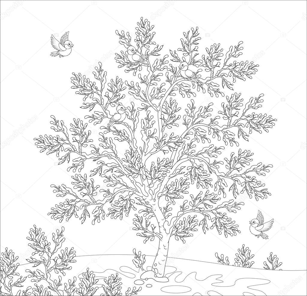 Раскраска иней на деревьях