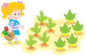 Girl in a vegetable garden — Stock Vector