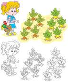 Girl in a vegetable garden — Stock Vector