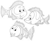 Coral fishes — Stock Vector