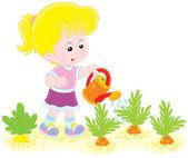 Girl watering carrots — Stock Vector