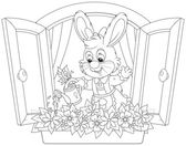 Easter Bunny watering flowers — Vector de stock