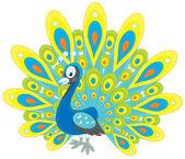 Peacock — Stock Vector