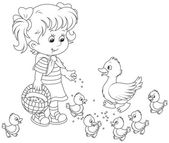 Girl feeding ducklings — Stock Vector