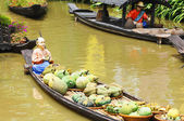 Canoes, filled with fruit — Stock Photo