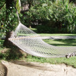 Hammock — Stock Photo #24531923