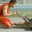 Crocodile show — Stock Photo #24657159