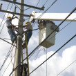 Stock Photo: Power Line Technician