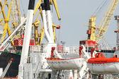 Cargo port — Stok fotoğraf
