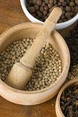 Spice still life: white pepper — Stock Photo