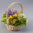 Easter basket with freesia, hyacinth and quail eggs — Stock Photo #38865941