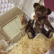 Teddy bear in hay — Stock Photo #40653913