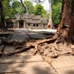 Angkor Wat in Siem Reap, Cambodia. — Stock Photo #51654509