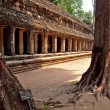 Angkor Wat in Siem Reap, Cambodia. — Stock Photo #51655113