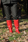 Red boots on the foliage — Stockfoto