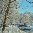 Beautiful view on the river and park in winter — Stock Photo