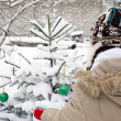A teen girl decorating Christmas tree outdoors — Stock Photo #19332573