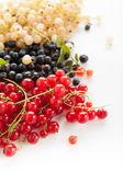 Berries — Stockfoto
