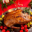 Holiday turkey — 图库照片