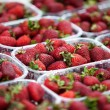 Strawberries in boxes — Stock Photo #49236393