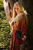 Chica escandinava con pieles — Foto de Stock