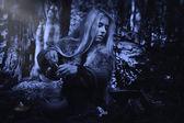 скандинавские ведьма пифия приготовления зелья — Стоковое фото