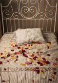 şık yatak odasında yatağın — Stok fotoğraf