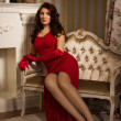 Romantic portrait of a beautiful lady in a red dress - Stok fotoraf