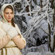 Russian beautiful girl in the winter forest — Stock Photo #22143153