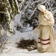 Stock Photo: Russigirl with sled in winter woods