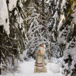 Stock Photo: Russigirl in winter woods
