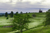 Rural landscape on a Kizhi Island, Russia — Stock Photo