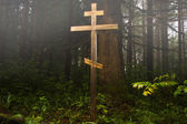 Cross in the misty forest — Stock Photo