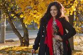 Pretty brunette in autumn park — Stock Photo