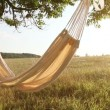 Hammock swinging on the wind at sunset — Stock Video