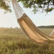 Hammock swinging on the wind at sunset — Stok video