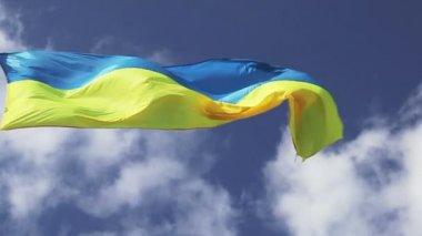 Flaga ukrainy na wzór zachmurzony — Wideo stockowe