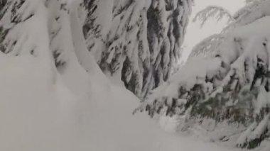 Snowboard w górach — Wideo stockowe