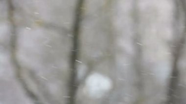 Snowflakes dancing on the wind — Stockvideo