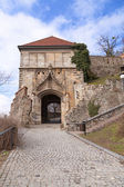 Stary Hrad - ancient castle — Stock Photo