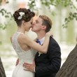 Just married couple kissing — Stock Photo #28120877