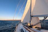 Günbatımı okyanus, regatta sırasında yelkenli — Stok fotoğraf