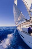 Segelbåt i havet — Stockfoto
