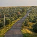 Road — Stock Photo #1291721